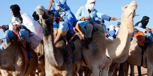 Festiwal Mousses w Maroku