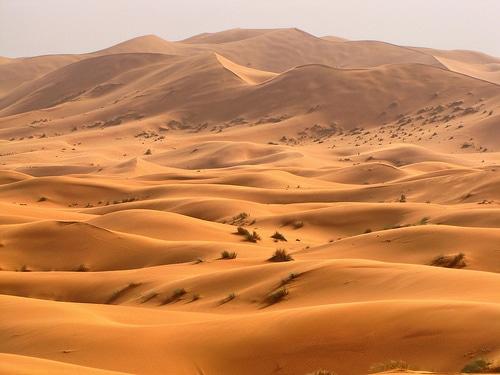 Pustynia Sahara, wydmy Erg Chebbi w Maroku