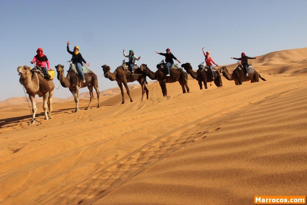 Maroko Przejażdżka na wielbłądach w Merzouga