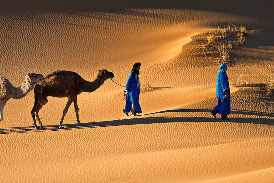 Wycieczka na pustynie w Merzouga