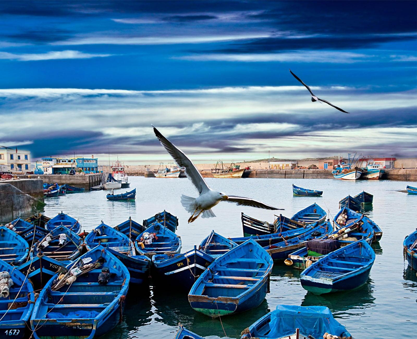 Poznaj Essaouirę - starożytny Mogador 2