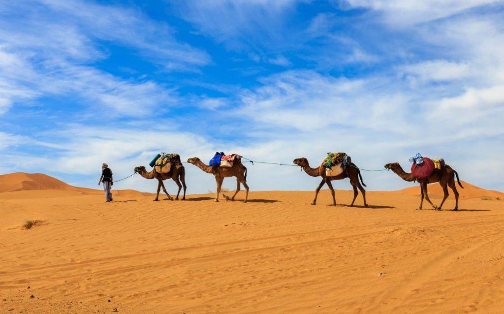 """Wycieczka z Marrakeszu """"MERZOUGA CLASSIC"""" – 5 lub 8 dni"""